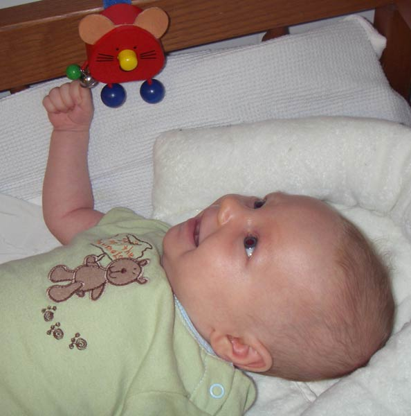 Leilani, 6 weeks old, playing with Mr Mouse