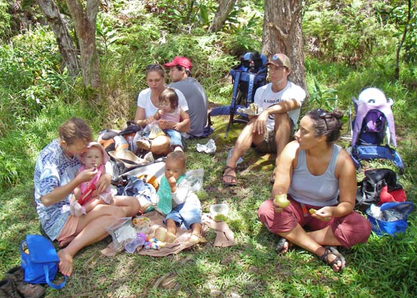 9m-alakai-picnic.jpg