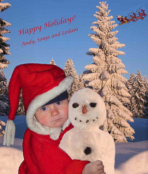 happy-holidays-5x7-blog.jpg